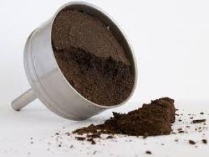 borras de café